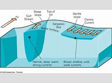 Upwelling diagram kalendaryo hd oceanography ccuart Gallery