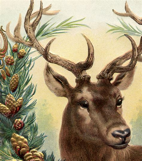 vintage christmas image deer  graphics fairy