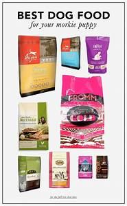 best food brands food With dog food brands list