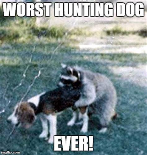 Worst Memes Ever - worst hunting dog ever imgflip