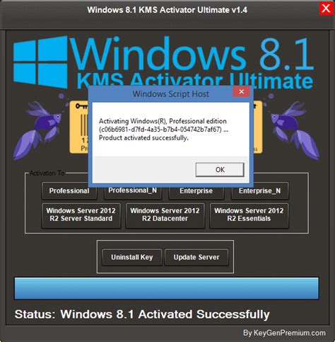 Windows 81 Permanent Activator 2016 Free Download