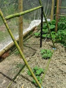 Easy Vegetable Garden Trellis Ideas