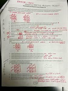 Punnett Square Worksheet 1 Answer Key