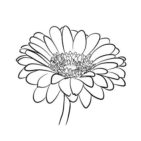 Kleurplaat Flower by Leuk Voor Gerbera