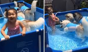 Facebook video shows a little girl swimming in a pool full ...
