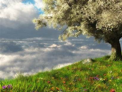 Nature Wallpapers Desktop 3d Spring Landscape Landscapes