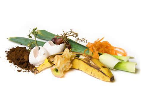 Wie Entstehen Maden In Der Küche by Wie Entstehen Obstfliegen So Vermeiden Sie Die Plage In