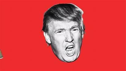 Trump Fox Decision Bad Every Beast Daily