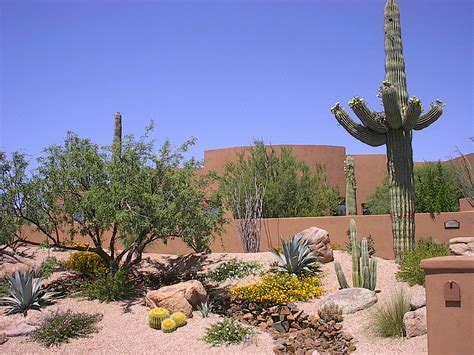 desert landscaping photos featured project gallery