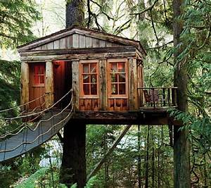 Top, 20, Beautiful, And, Amazing, Tree, House, Wallpapers, Pics