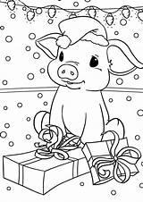 Pig Coloring Tulamama sketch template