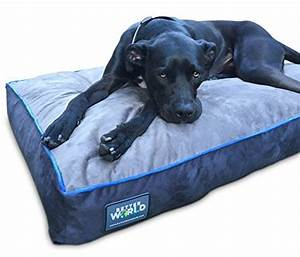 1000 ideas about orthopedic dog bed on pinterest dog With dog beds for large dogs with hip problems