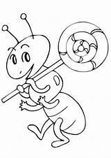 Ant Coloring Lollipop Ants Kolorowanki Lizaki Dzieci Dla Colorir Formiga Drawing Pobrania Lovesmag sketch template