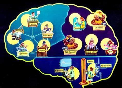 Understanding The Adhd Brain