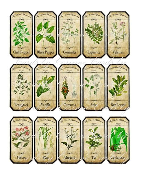 cuisine stickers vintage inspired assorted herb spice food tea bottle jar