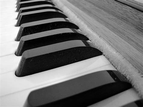 vaja  vaja harmonium  western instrument adapted