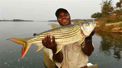 Avid Fisherman Experience In