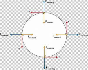 31 Free Body Diagram Centripetal Force