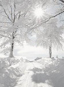 Sprüche Winter Schnee : die besten 25 schnee ideen auf pinterest winter winterlicht und schnee licht ~ Watch28wear.com Haus und Dekorationen