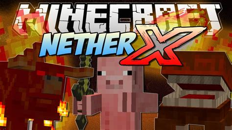 Nether X! (can You Survive In The Brand New