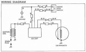 Yamaha Blaster Wire Diagram  U2013 Shelectrik Com