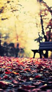 Autumn Leaves Park Bench iPhone 5 Wallpaper / iPod ...