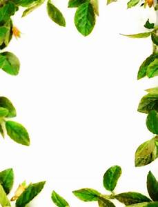 PARA IMPRIMIR: Bordes de hojas para imprimir