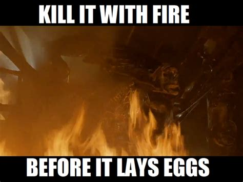 Kill It With Fire Meme - image 347877 kill it with fire know your meme