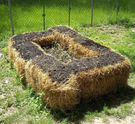 hay bale gardening straw bale gardening the ultimate beginner