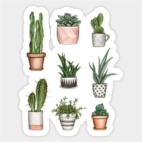 cute home plants home plants sticker teepublic