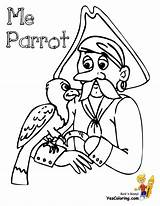 Pirate Coloring Pirates Pages Parrot Printout Costume Boys Yescoloring Scurvy sketch template