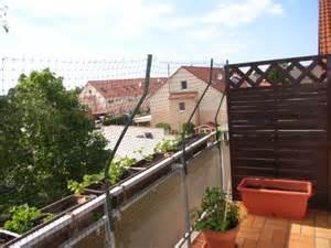 katzen balkon balkon katzen sicher katzen forum
