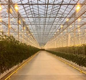Red Sun Farms greenhouse opened north of Dayton, Ohio
