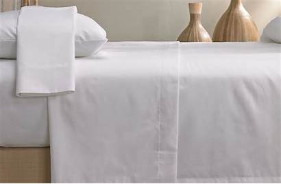 Sheet Signature Marriott Sheets Bedding Bed Luxury