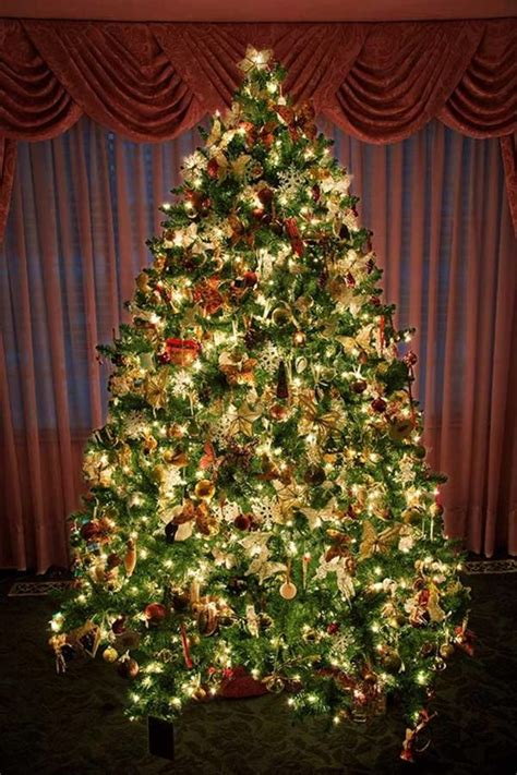 christmas trees decorated 24 beautiful christmas tree pictures creative