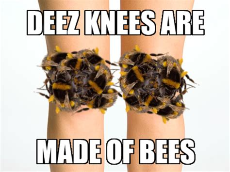 Bee Memes - deez knees are made of bees bees know your meme