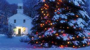 [outdoor Christmas Tree Lights Large Bulbs]-images