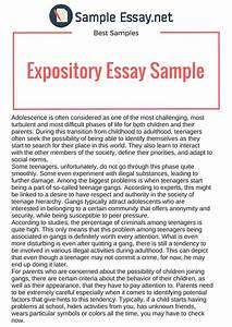english essay pmr what to expect from a creative writing