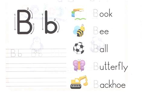 alphabet capital and small letter b b worksheet for