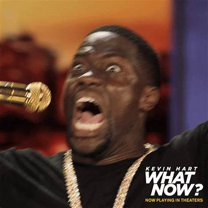 Kevin Hart Gifs Film Giphy Funny Tweet