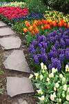 1000+ ideas about Flowers Garden on Pinterest | Flower beautiful flower gardens pinterest