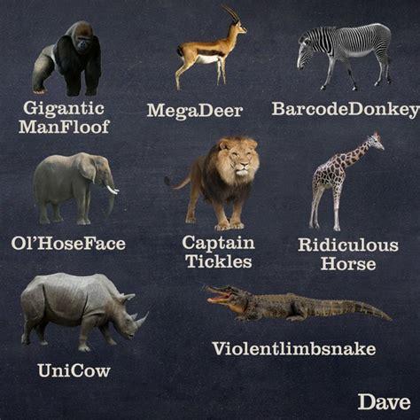 names  australian animals common sense evaluation