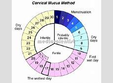 Calendar Method monthly calendar 2017