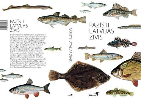 Grāmata Pazīsti Latvijas zivis - Ūdens prieku baudītājam ...