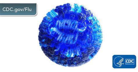 influenza flu cdc