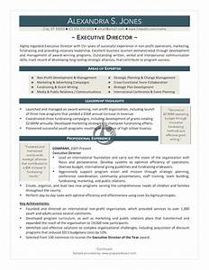 pin executive director resume example on pinterest With executive director resume template