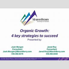 Organic Growth 4 Key Strategies To Succeed