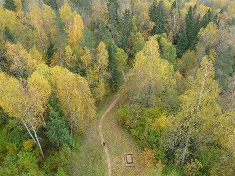 Lielais Liepu kalns   Latgales tūrisma mājaslapa