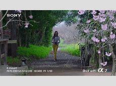 Bildbeispiele von der Sony Alpha 7S VideoGolemde