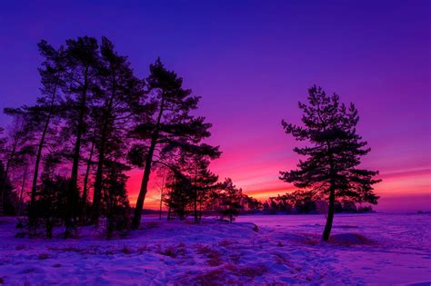 Sunset Winter Wallpapers So Beautiful And Free To Download